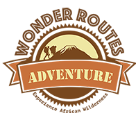 Wonder Route Adventures